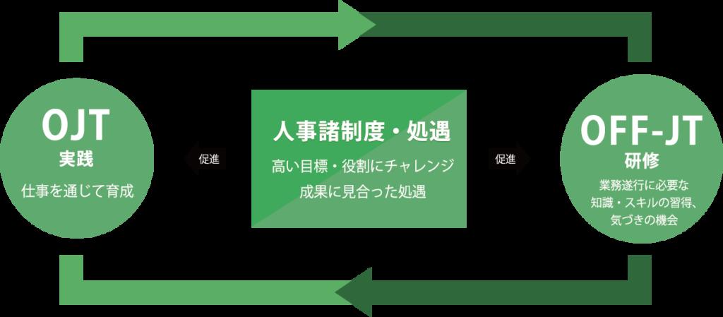 人材育成の体系図